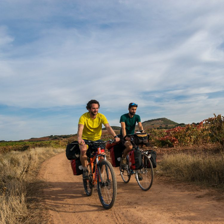 cycling to Compostela in between the wine fields