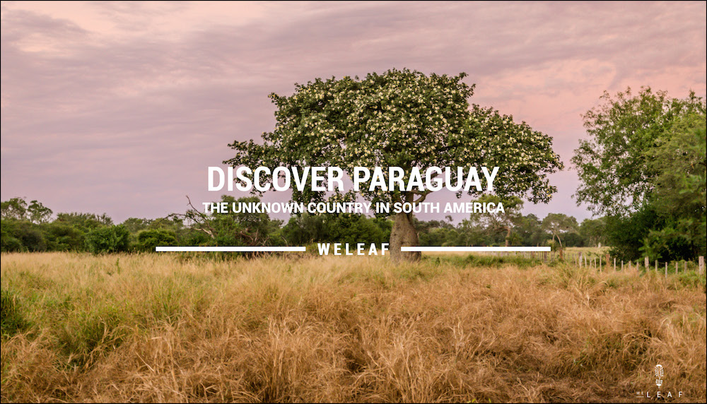 Discover Paraguay video