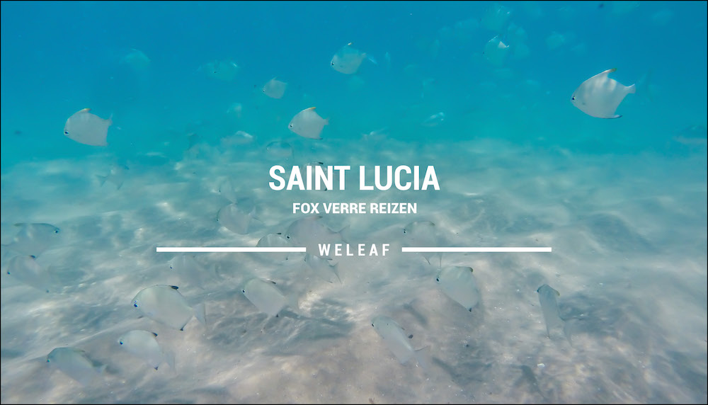 Saint Lucia Zuid Afrika video