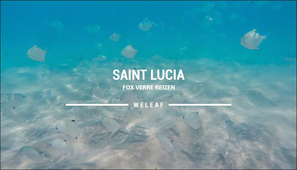 Saint Lucia Zuid Afrika video