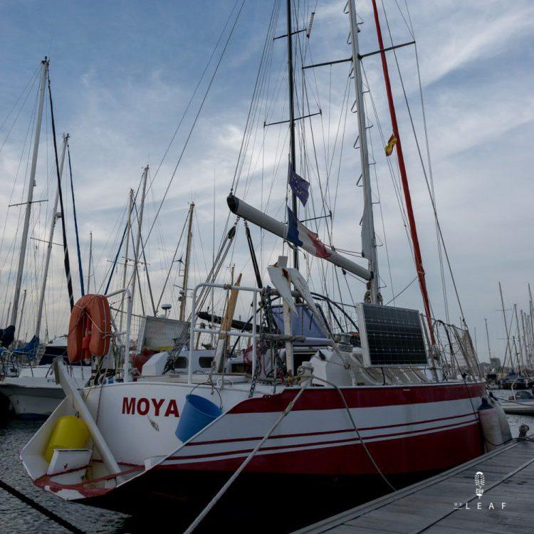 Zeilboot Moya
