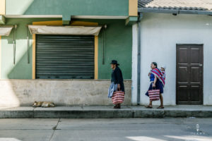 Traditional women in the Andes