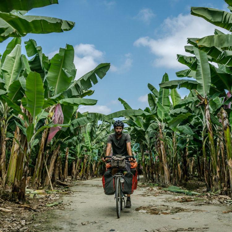 fietsen tussen bananenplantages