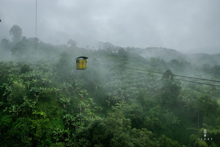 De koffieroute in Colombia