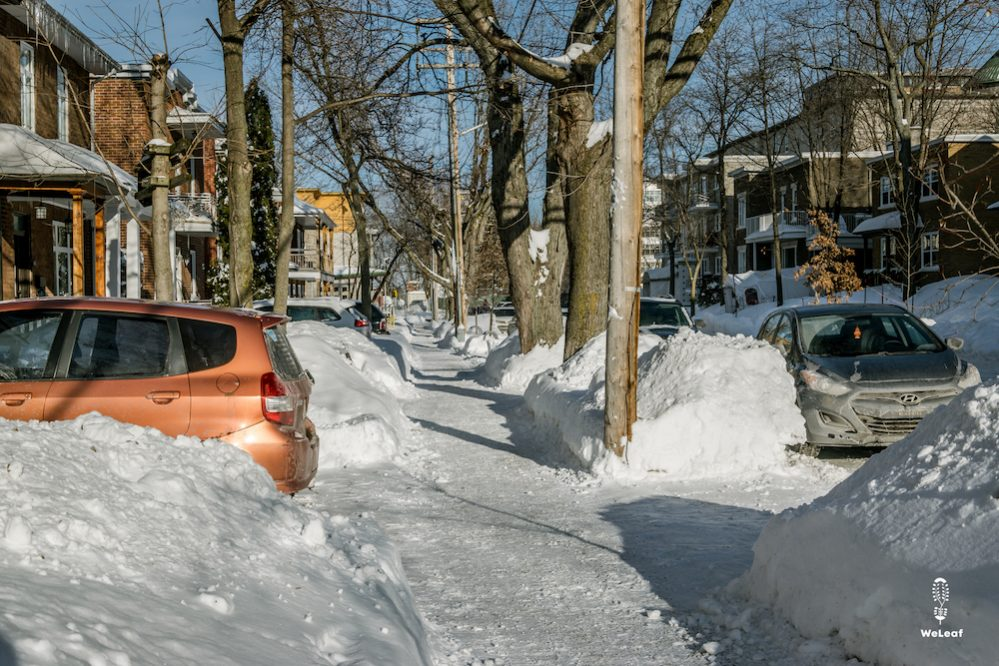 15 weetjes over Quebec