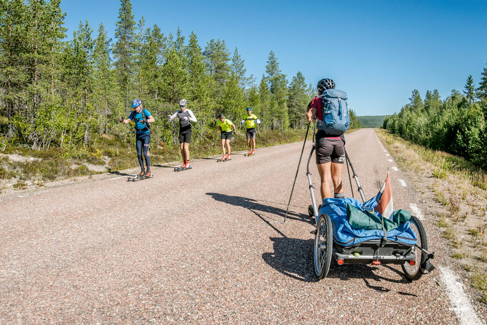 roller skiers training in Sweden