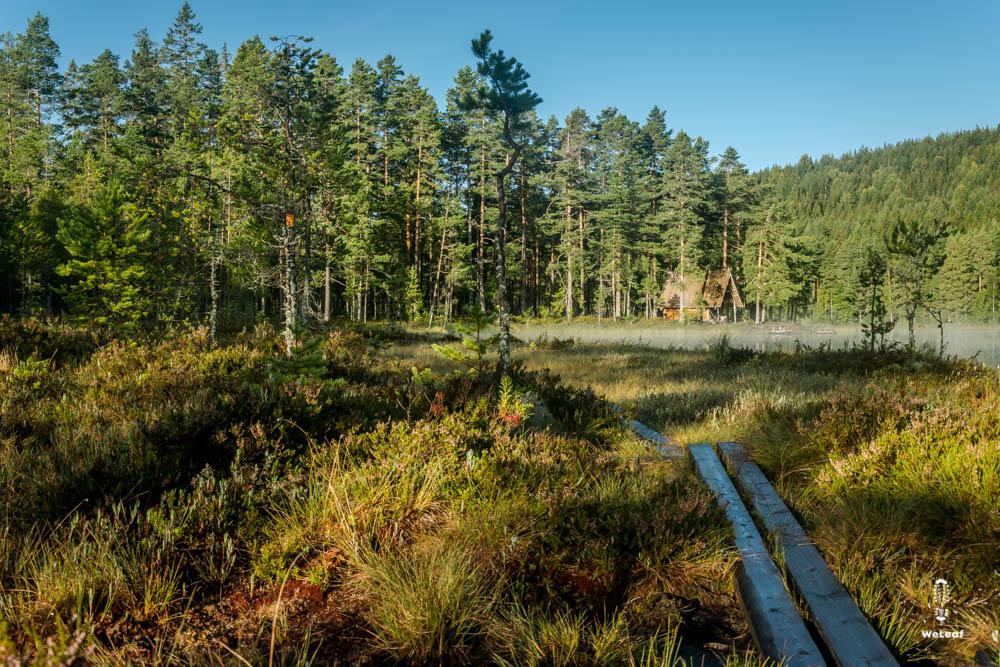 pilgrimsleden Sweden